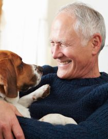 Pets for Alzheimer's Patients Provide Huge Benefits